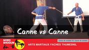 Canne de combat vs Canne de combat